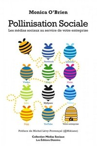 Pollinisation sociale