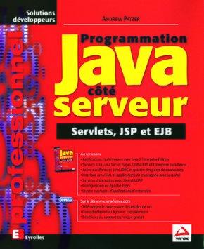 Andrew Patzer- Programmation Java côté serveur