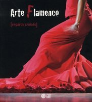 Arte flamenco - Regards croisés