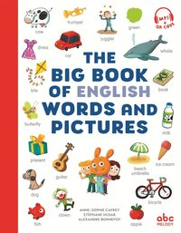 Imagiers langues - the big book of english words and pictures