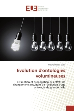 Evolution d'ontologies volumineuses