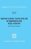 Cambridge tracts in mathematics: series number 217: defocusing nonlinear schroedinger equations