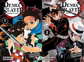 Demon slayer - Tome 1