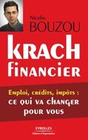 Nicolas Bouzou - Krach financier