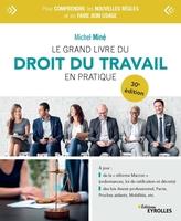 M.Miné - Le grand livre du droit du travail en pratique