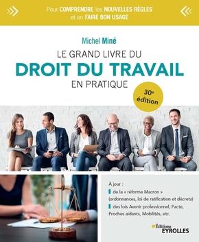 Le Grand Livre Du Droit Du Travail En Pratique M Mine 30eme Librairie Eyrolles