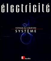 Patrick Bastard, Daniel Fargue, Philippe Laurier, Bernard Mathieu, Muriel Nicolas, Philippe Roos - Électricité, voyage au coeur du système