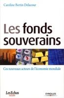 Caroline Bertin-Delacour - Les fonds souverains
