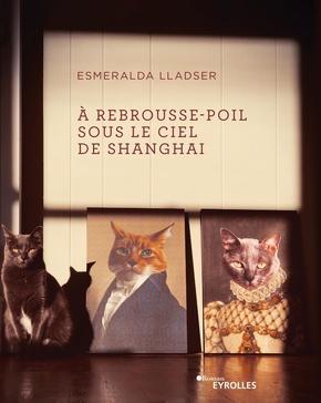 E.Lladser- À rebrousse-poil sous le ciel de Shanghai