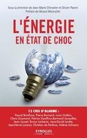 J.-M.Chevallier, O.Pastré - L'énergie en état de choc