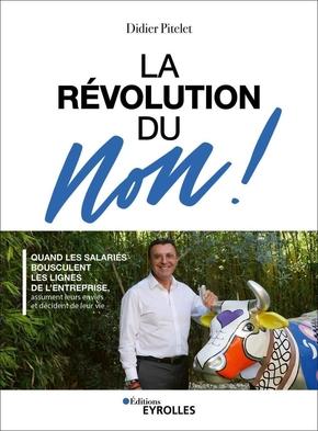 D.Pitelet- La révolution du Non !