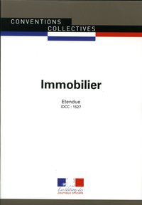 Immobilier ccn 3090