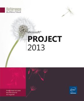Microsoft Project 2013