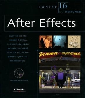 O.Cotte, M.Doszla, B.Giacobbé, O.Léonardi, B.Quintin, M.Vig, C.Gallego- After Effects