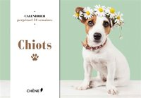 Calendrier - Chiots