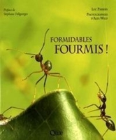 Formidables fourmis !