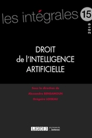 Droit de l'intelligence artificielle (édition 2019)