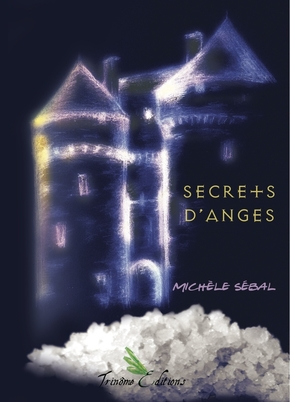 Secret d'anges de michèle sébal