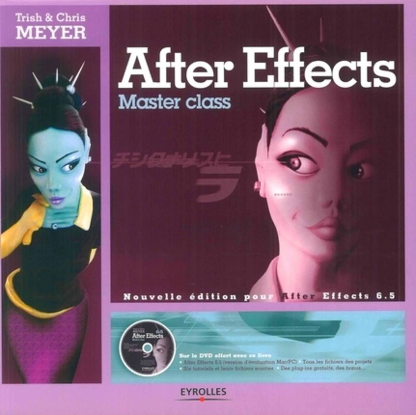 Adobe After Effects 6.5 Studio Techniques