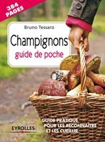 Bruno Tessaro - Coffret champignons. guide de poche + couteau