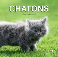 Calendrier chatons (édition 2020)