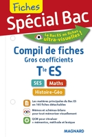 Compil de fiches gros coefficients - Terminale ES