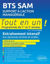 Support à l'action managériale