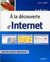 Mathieu Lavant - A la découverte d'Internet