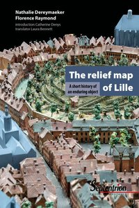 The relief map of Lille