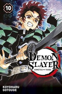 Demon slayer - Tome 10