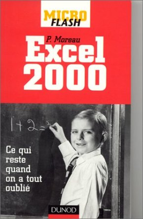 Micro Flash Excel 2000