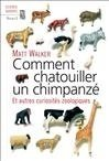 Comment chatouiller un chimpanzé