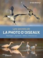 Erwan Balança - Les secrets de la photo d'oiseaux