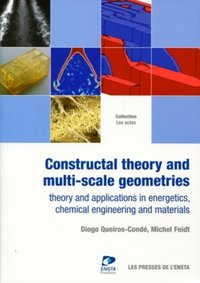Constructal Theory and Multi-scale Geometries