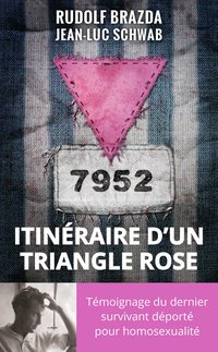 Itinéraire d'un triangle rose
