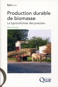 Production durable de biomasse
