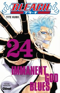Bleach - Volume 24 - Immanent god blues