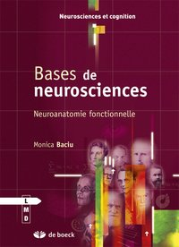 Bases de neurosciences