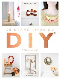 Le grand livre des DIY (Do it yourself)